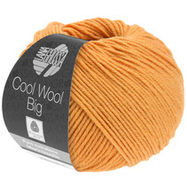 Cool Wool Big 994