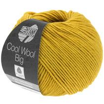 Cool Wool Big 996
