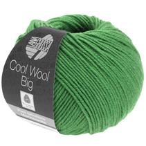 Cool Wool Big 997
