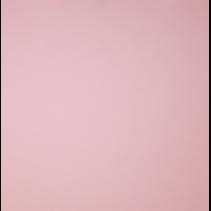 Knit co/ea Jersey Rose (per 10cm)