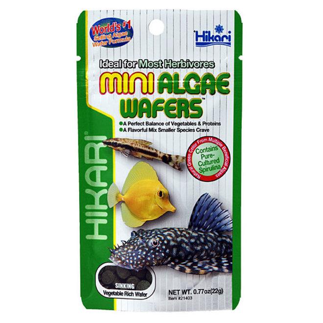 Hikari Tropical Mini Algae Wafers 22 gram, zinkende wafers