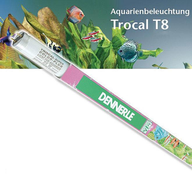 Dennerle Trocal T8 36 watt 1200 mm Color Plus