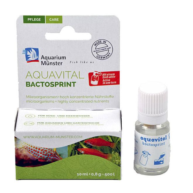 Aquarium Munster Aquavital Bactosprint 10ml + 8 g, bacteriën