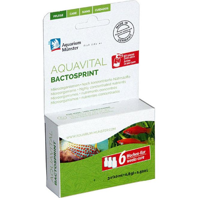 Aquarium Munster Aquavital Bactosprint 3x10ml + 8 g, bacteriën voor 6 weken