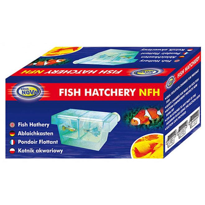 Aqua Nova fish hatchery, kweekbak
