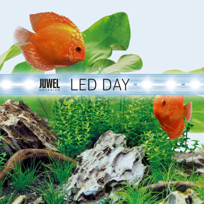 Juwel LED Day 1200 mm 31 watt