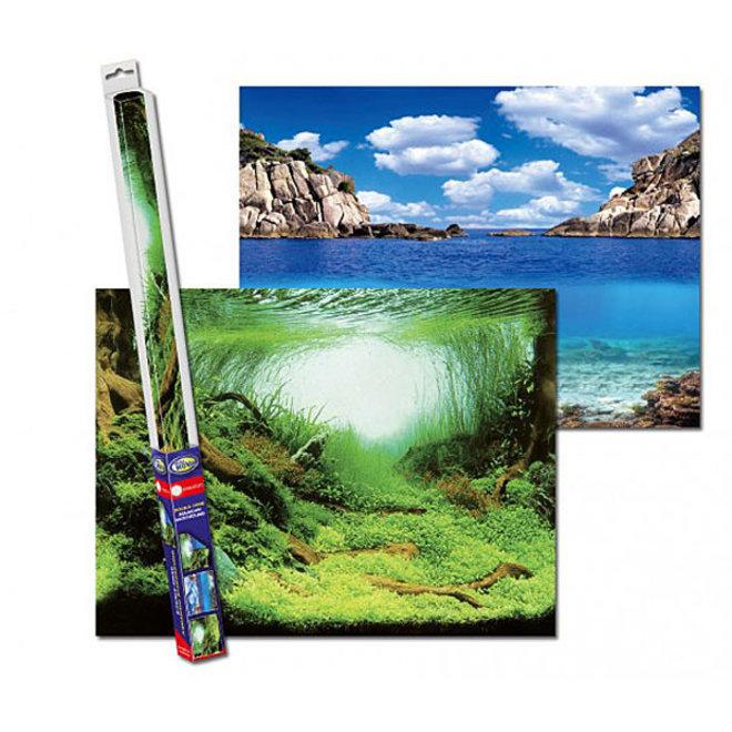Aqua Nova achterwand poster L 100x50 cm plant / oceaan motief