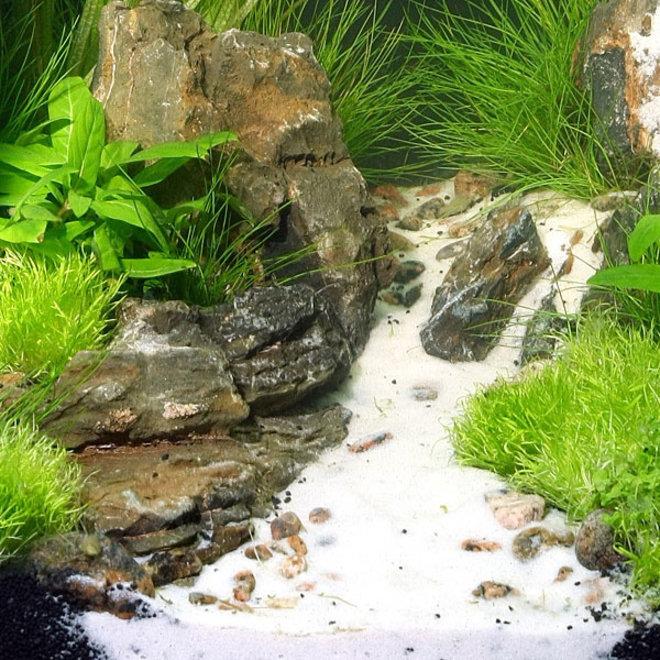 JBL Sansibar White 5 kg, fijne witte bodemgrond