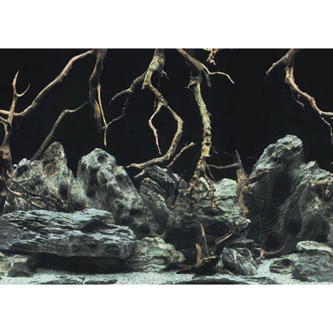 Aqua Nova achterwand poster S 60x30 cm water / rots-takken motief