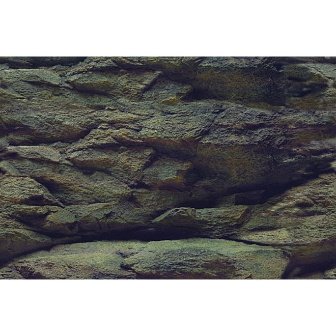 Aqua Nova achterwand poster S 60x30 cm plant / rots motief