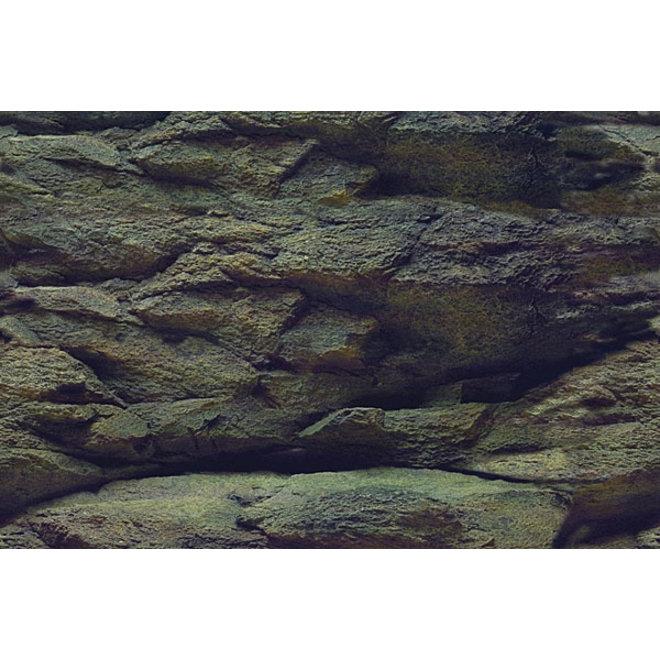 Aqua Nova achterwand poster XL 150x60 cm plant / rots motief