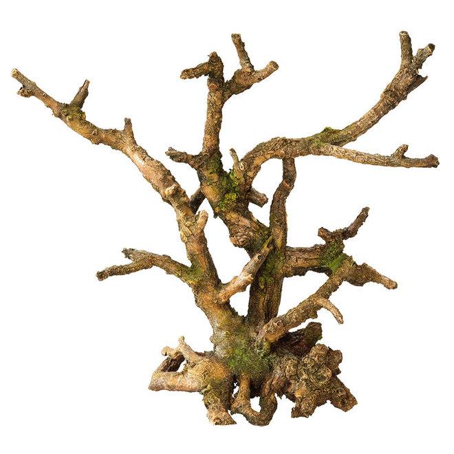 Aqua Della bonsai zonder blaadjes bruin