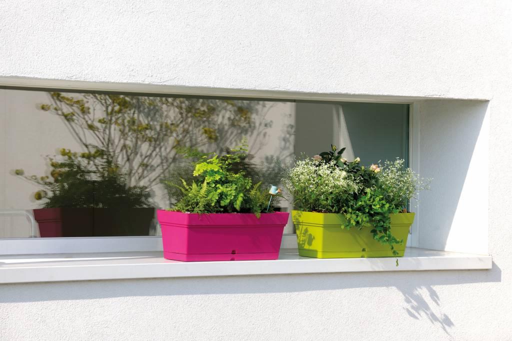 Bloembakken Voor Balkon.Balkon Bloembak 50 Cm Taupe Waterreservoir E Surprice