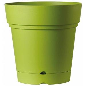 Pot de luxe 58 cm olive (roules et réservoir d'eau)