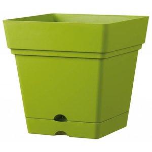 Pot carré 38 cm olive (roules et réservoir d'eau)