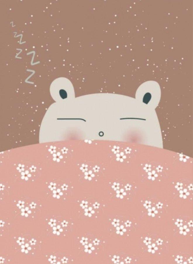 Bibelotte poster slaap lekker roze