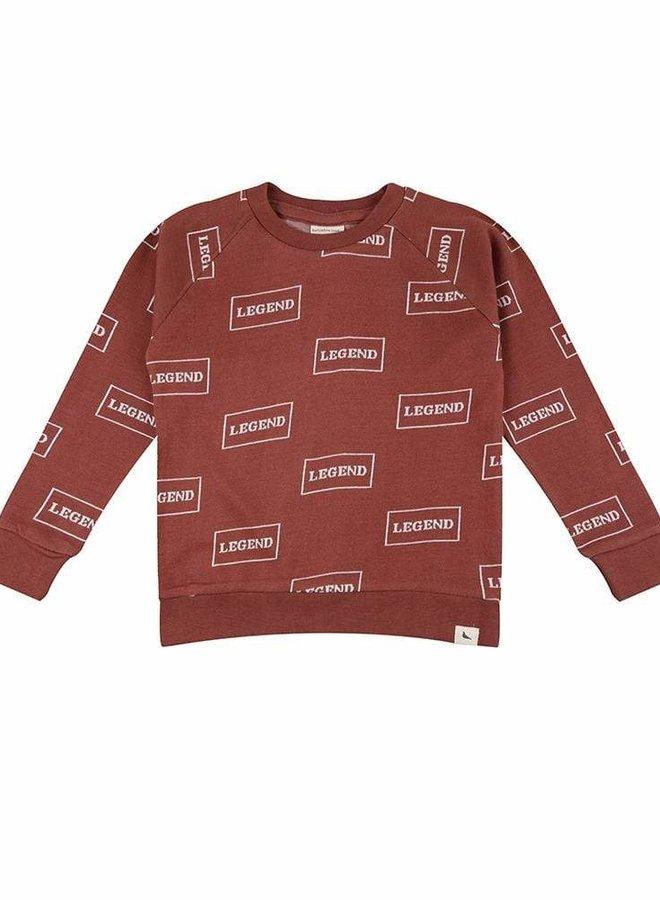 Turtledove legend sweater