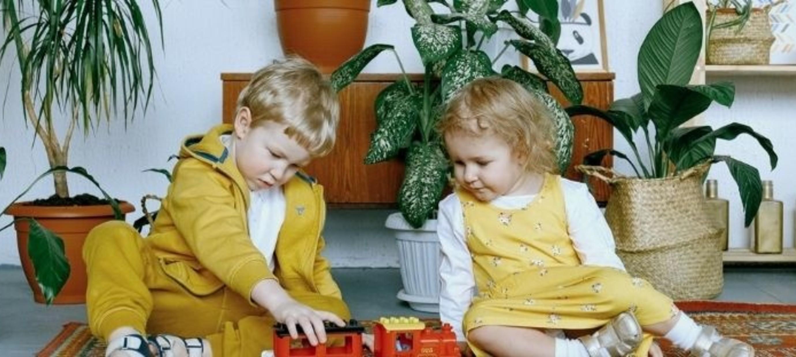 Kamerplanten in de kinderkamer