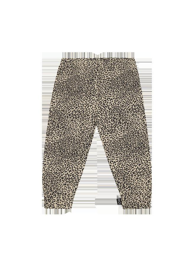 House of Jamie - Rib Legging Charcoal Little Leopard
