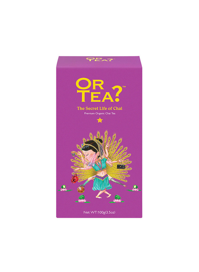 Or Tea? The Secret Life of Chai - Black tea with spices refill pack (100g) loose tea
