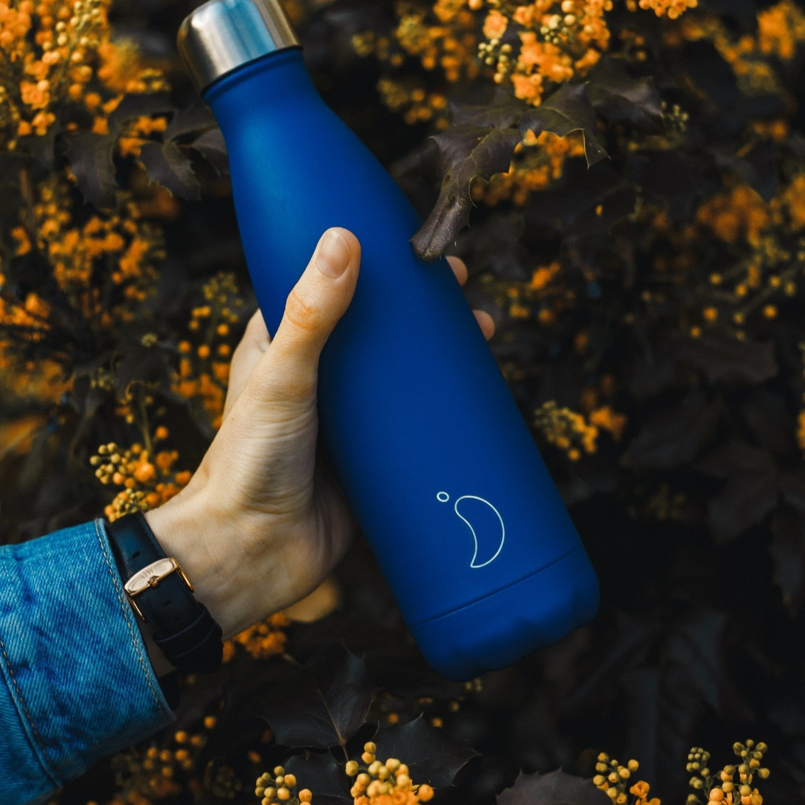 Chilly's Matte Blue - 750ml