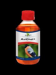 Avian AviChol