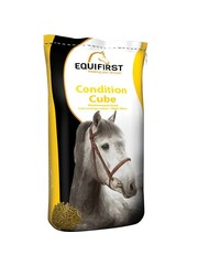 Equifirst Condition Cube (20 kg)