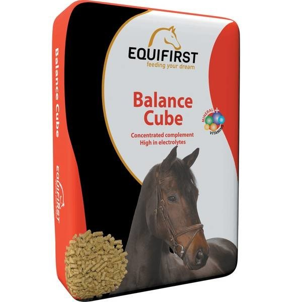 Equifirst Balance Cube (20 kg)