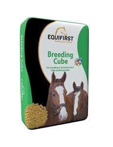 Equifirst Breeding Cube (20 kg)