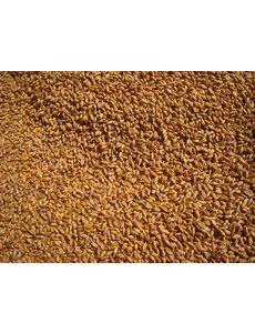 Tarwe (1 kg)
