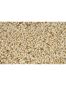 Cardy-Safflower seeds (1 kg)