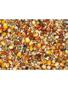 Vanrobaeys Rui rode en gele Cribbs maïs (Nr. 5)