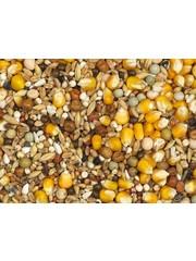Vanrobaeys Rui gele Cribbs maïs (Nr.6)