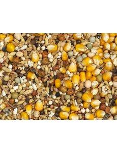 Vanrobaeys Moulting yellow Cribbs maize (No. 6)