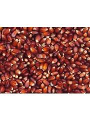 Vanrobaeys Bordeaux Cribbs maïs (Nr. 200)