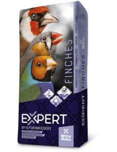 Witte Molen Expert Red Siskin