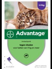 Bayer Advantage 80