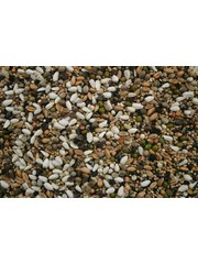 Sprouted seeds for (Big) Parakeets (1 kg)