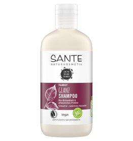 SANTE Champú Family Shine Hoja de abedul y plantas orgánicas Proteína 250ml