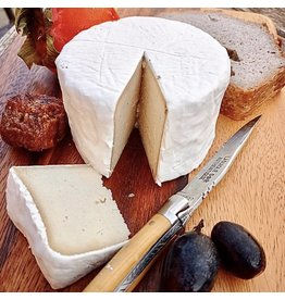 VHEESE CAMEMBERT 200g aprox.