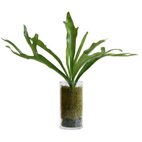 HK-living Decoratie staghorn vaas groen kunststof glas 59x55x59cm
