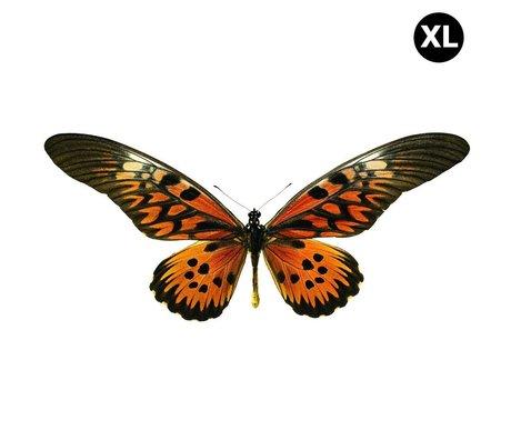KEK Amsterdam Muursticker vlinder XL Butterfly 961 bruin oranje 45x20cm