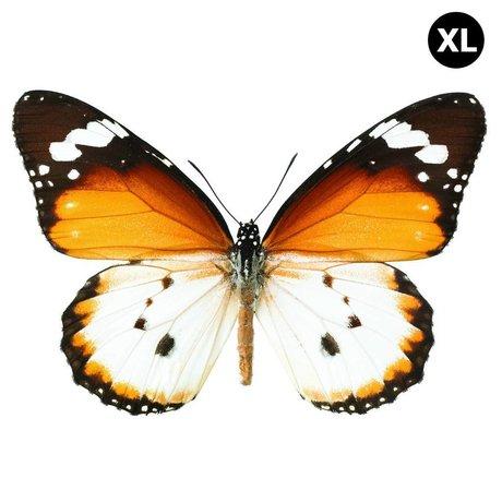 KEK Amsterdam Muursticker vlinder XL Butterfly 962 bruin wit 34x23cm
