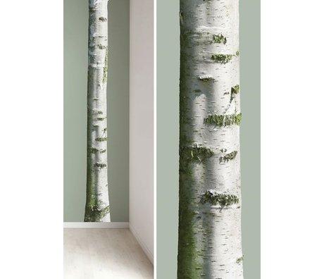 KEK Amsterdam Muursticker boomstam 'Home tree 7' bruin/groen 20x300cm vinyl