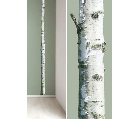 KEK Amsterdam Muursticker boomstam 'Home tree 2' bruin/groen 8x260cm vinyl
