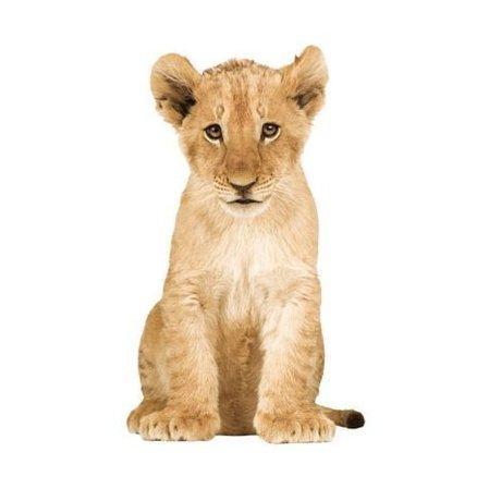 KEK Amsterdam Muursticker leeuw vinyl bruin 28x48cm, Safari Friends Lion cub