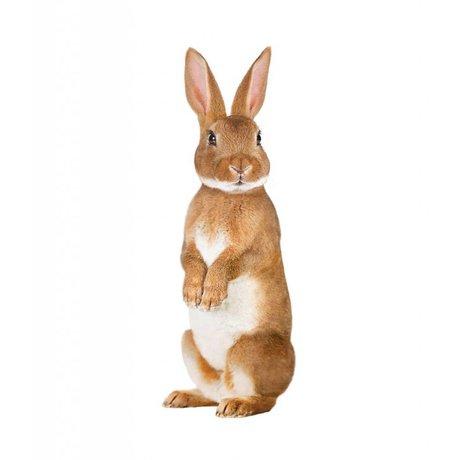 KEK Amsterdam Muursticker konijn forestfriends