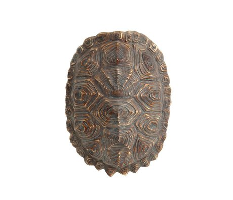 HK-living kunstmatige schildpaddenschild groen bruin kunststof 27x20x13,5cm