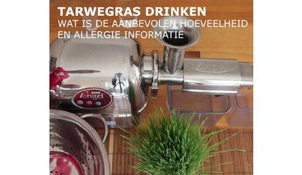 Wanneer drinkt u tarwegrassap?
