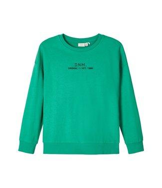 Name it Name it : Sweater Basim (Groen)